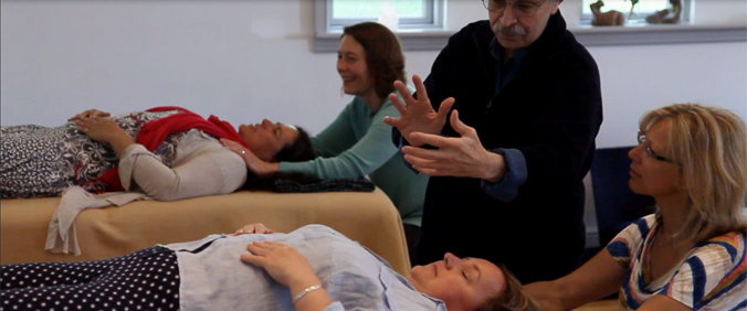 Craniosacral Biodynamics Full Professioanal Training